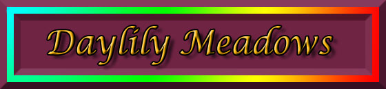 Daylily Meadows Banner